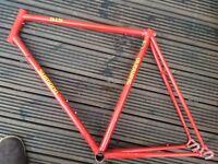 """Shimano"" steel road frame. 56cm."