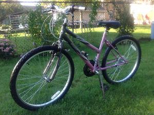 old bicycle Cambridge Kitchener Area image 3