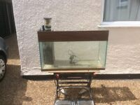 Marine aquarium and sump tank fish tank