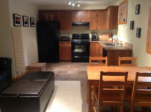 1 bedroom fully furnished basement suite in 3 Sisters Canmore