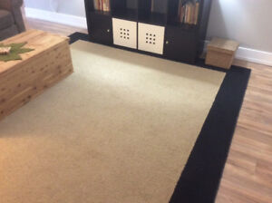 Area Rug for Family Room