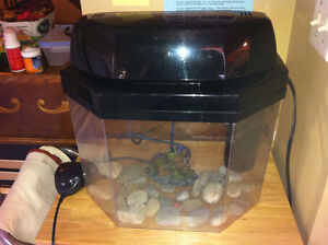 Fish Tank with Full Accessories