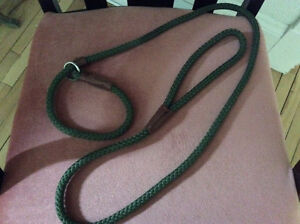 Brand new dog collars and slip lead leash