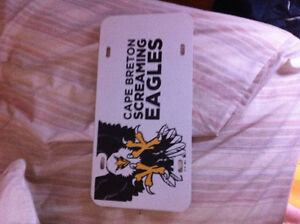 Screaming Eagles license plate