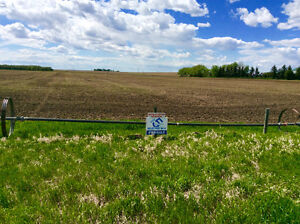 Thinking of selling your rural home? Michelle Greysen, Realtor