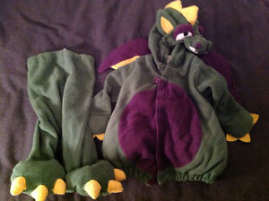 Various sized costumes (12m- 4T)