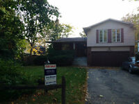 Detached Family Home In Prestigious Mississauga Rd Neighbouhood