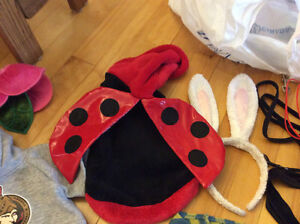Dog cloths size small xs small and med