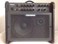 Fishman Loudbox 100, Acoustic Amp