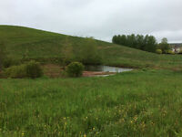 Acreage and barn for sale in North River