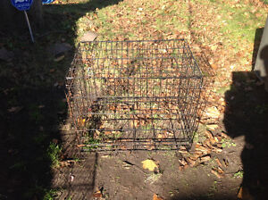 Pet cage dog cage little surface rusty solid , only 25 dollars Kitchener / Waterloo Kitchener Area image 2