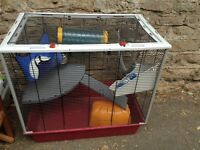 Rat cage bedding and food included