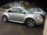 Vow beetle