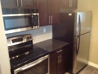 One Bed, One Bath, Lots of Upgrades - Avail. June 1st or sooner