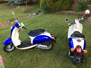 Honda CH50 Jazz scooter. (2) available. $1500 each both mint