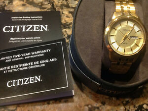 Citizen Eco Drive Men's watch for sale