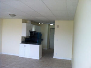 Downtown Arena area new Bachelor apartment for Rent