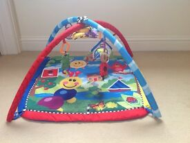 Baby Einstein caterpillar and friends activity gym