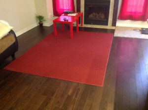 RED ACCENT AREA RUG FOR SALE - MAKE AN OFFER TODAY