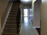 Orleans Exec. Single Home 4 BD RM For RENT DECEMBER 1 - $1,850