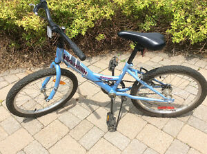 "Girls 20"" Raleigh Big Horn"
