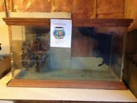 Fish/reptile tank - 120 gallon - price reduced