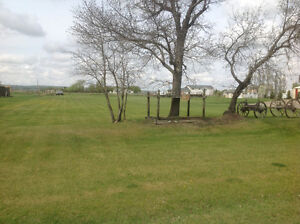 Large lot in Magrath