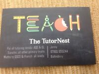 Transfer test practice sessions available with experienced tutor