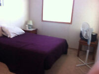 2 single bedrooms available for short term rent