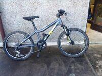 Mountain Bike - Ridgeback MX20 Terrain