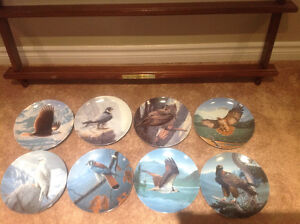 Birds of Prey Collectors Plates Kitchener / Waterloo Kitchener Area image 1