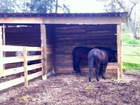 Under new management! 500$/month Full Board for Horses
