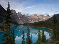 Photography Tours in the Canadian Rockies (Driver Included)
