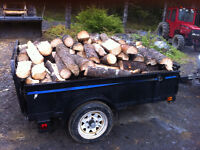 Dry Split firewood 4x6 trailer load delivered to Bridgewater