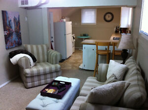Spacious lower level suite in great central location
