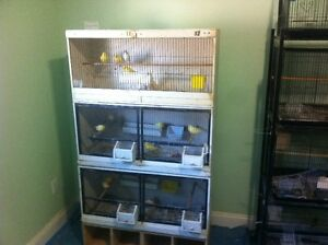 Cages for Canaries/small birds