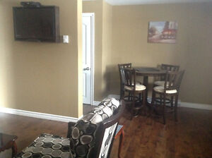Furnished One bedroom basement apartment near CONA Cbs