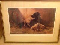 Labrador framed print by john Trickett