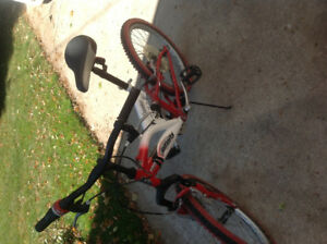 Youth bicycle in good condition.