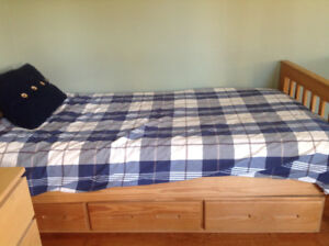 Youth Solid Pine Bed