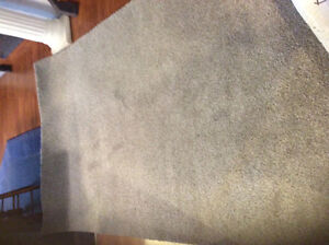 Carpet. Smart strand. 4ft 11in.  x.  8 ft  6in