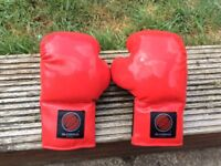 Olympus boxing gloves