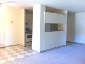 Spacious Comfortable 2 Bedroom-Karamar Apt