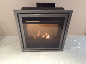 Paramount Electric Fireplace Insert