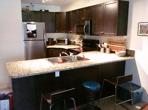 Modern 2bdrm Canmore Condo Great Amenities - Available Sept 1st