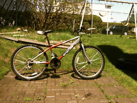 Red CCM Youth Mountain Bike