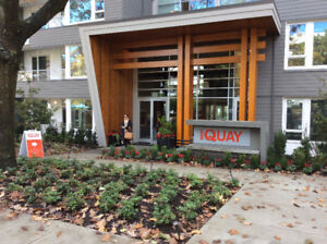Brand New 2 bed 2 bath apartment  in Lower Lonsdale N Vancouver