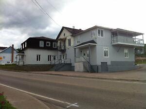 Immeuble de 8 logements a St_Siméon de Charlevoix
