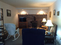 Large, clean, fully furnished1 b/r apt