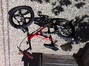 Schwinn Boys or girls bike